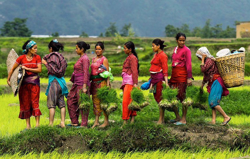 Integration of migrant women in the receiving society within Urban Agriculture Labs